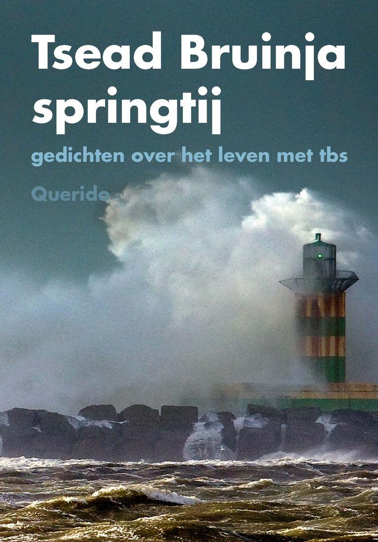 Tsead Bruinja: Springtij. Beeld Querido
