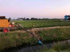 Slootwater op rantsoen voor boeren in Overijssel en Drenthe