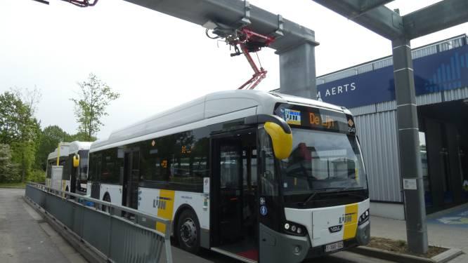 Van Edegem naar Antwerpen zonder uitstoot: eerste twee elektrische bussen rijden vanaf vandaag rond