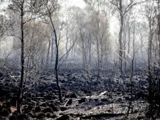 Natuurbranden ongemeen fel: 'Maar vuur is niet altijd slecht'