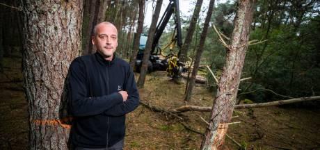 Utrechts Landschap laat heide terugkeren op landgoederen Heidestein en Bornia