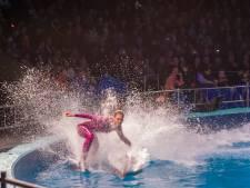 Dolfinarium stopt met showelementen in voorstellingen
