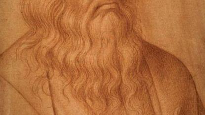 """Nieuwe theorie waarom Da Vinci Mona Lisa niet kon afwerken: """"Hij kon geen palet meer vasthouden door klauwhand"""""""