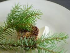 Toprestaurant Noma krijgt eindelijk derde ster van Michelin