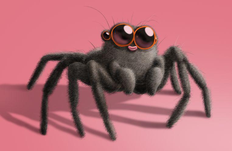 Wat kun je doen tegen spinnen in huis? Beeld Matteo Bal