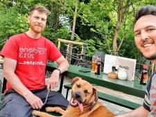 Hond Griff is dol op de Amsterdamse metro en is na aandoenlijke video ook geliefd op TikTok