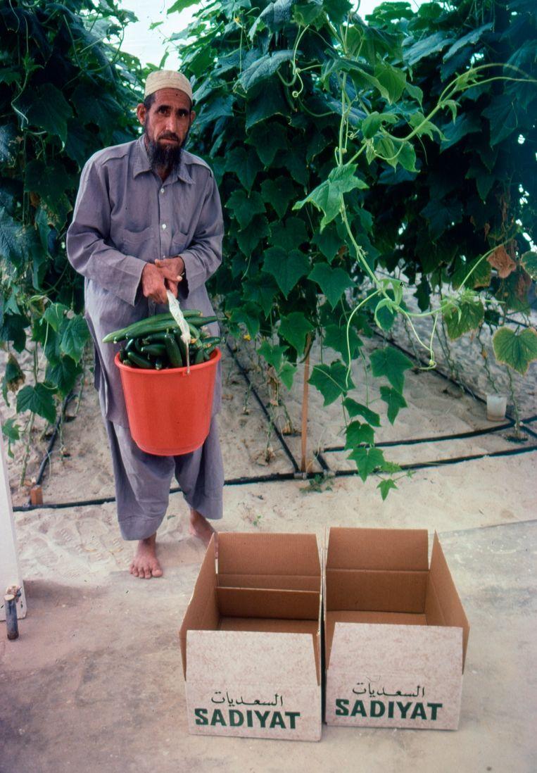 Abu Dhabi, 1980 Beeld Eddy Posthuma de Boer