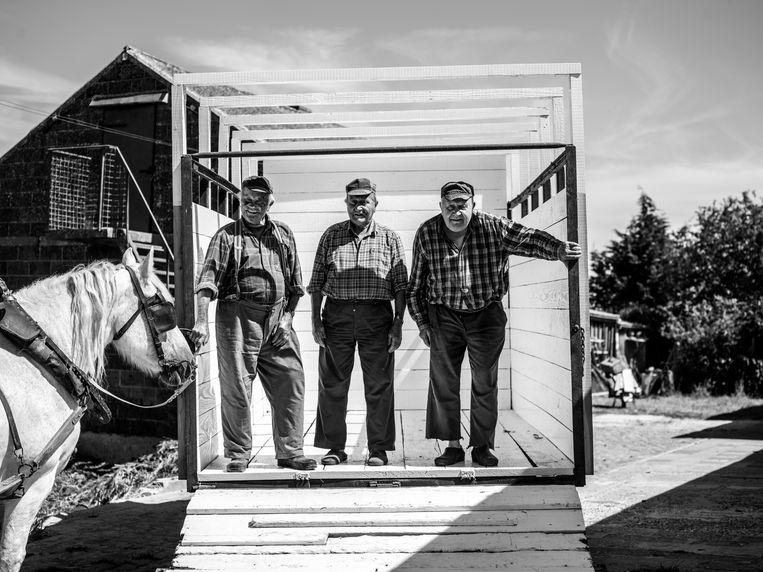 Jonkershove, gebroeders Callewaert, Gerard (91) en de tweeling Hubert en Gilbert (88): 'Bij ons geen vrouwvolk aan de muur.'   Beeld Jelle Vermeersch