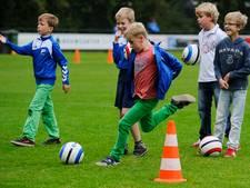 Overgrote meerderheid steunt samengaan Dalfser voetbaljeugd
