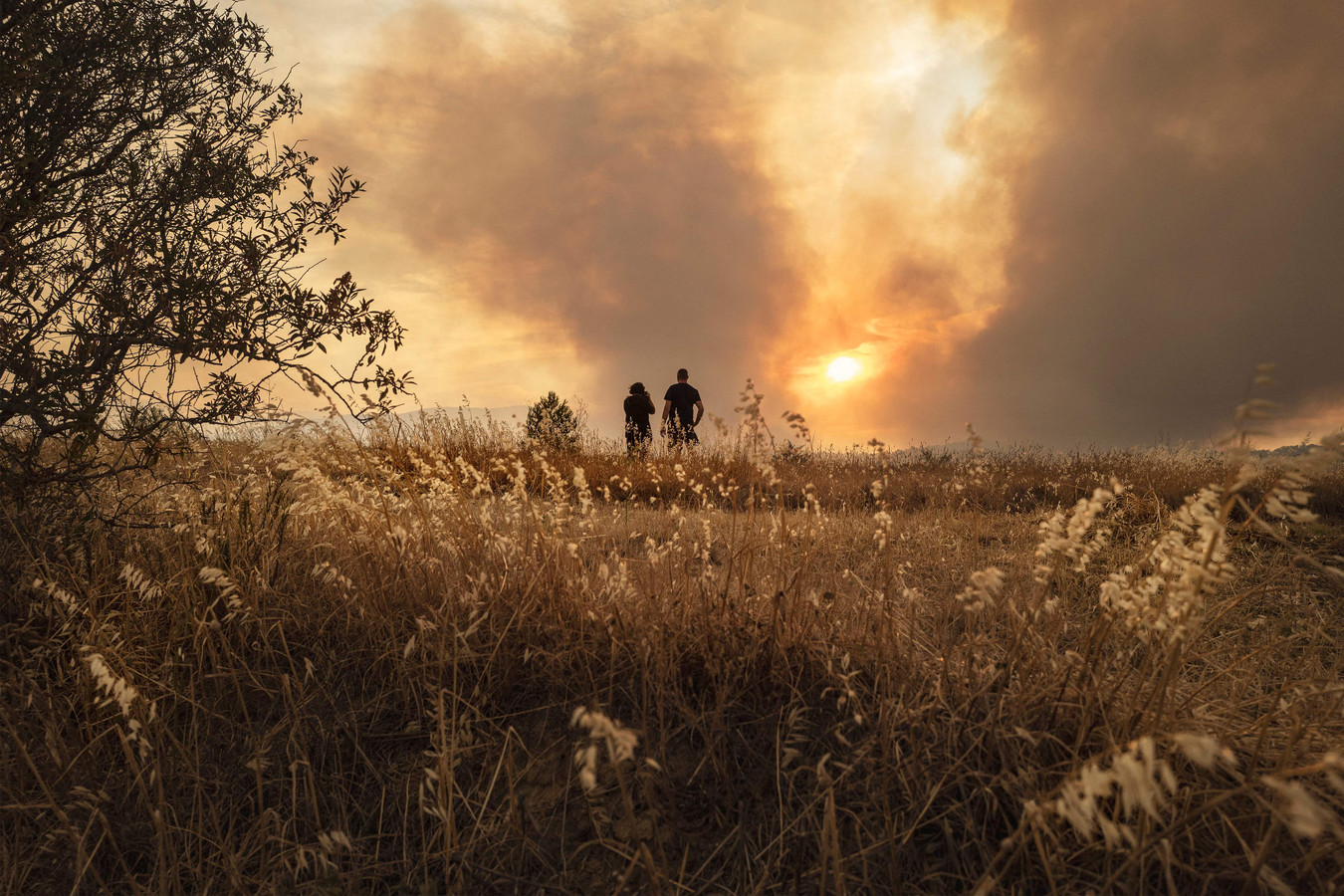 Omwonenden kijken van een verre afstand naar een bosbrand in Zuid-Frankrijk.