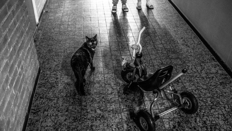'In de nacht hoor je muizen rennen en elke avond komen ze onder je bed.' Beeld Carla Kogelman