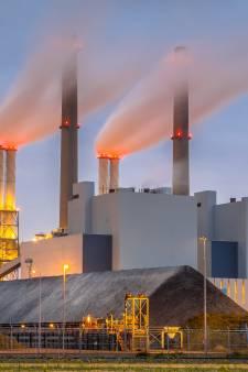 Kolen maken comeback: 'Zijn we helemaal gek geworden?'