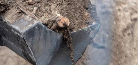 Nijmegenaar doet lugubere ontdekking: tientallen mensenbotten in bouwput naast begraafplaats