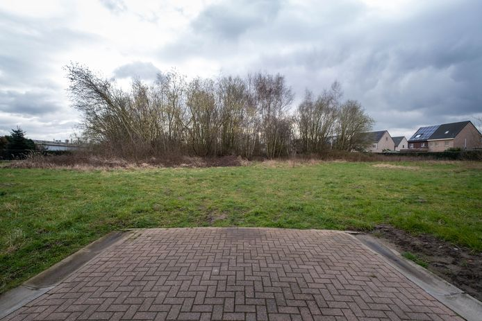 Het gebied tussen Brandstraat en Breendonkstraat in Willebroek.