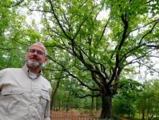 Een hek én een nominatie voor de Heksenboom in Bladel