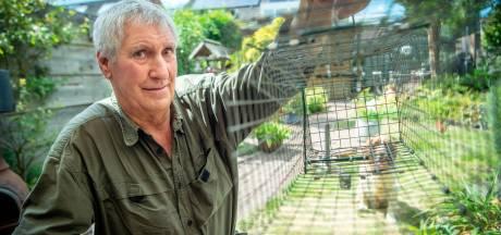 Waterschap over rattenoverlast: maaien heeft geen zin