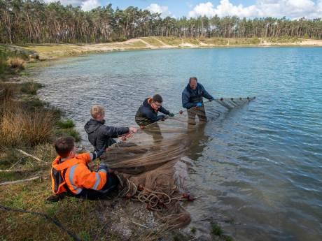 Deze reddingsoperatie voorkwam dat Nunspeetse Zandenplas een mortuarium van vissen werd: 'Dit is dierenleed'
