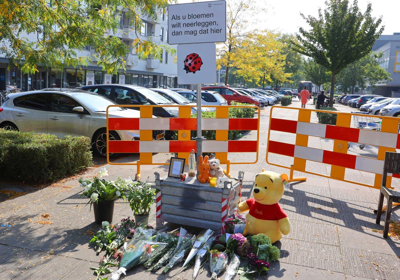 Belangstellenden leggen in Den Bosch bloemen op de plek waar een 34-jarige vrouw om het leven is gekomen door een steekpartij. De politie heeft hiervoor een 31-jarige verdachte aangehouden. De vrouw had een 1-jarig kindje bij zich. Dat bleef ongedeerd en is opgevangen.