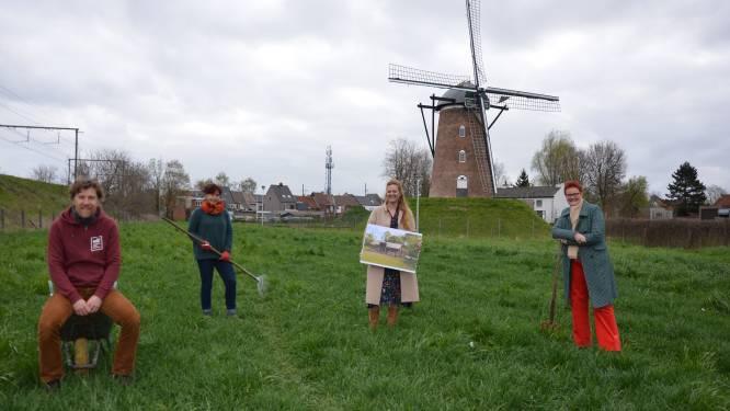 """Crowdfundingcampagne maakt Lokeraars warm voor buurtmoestuin 't Bonenveld: """"Samentuin in schaduw van Heirbrugmolen"""""""