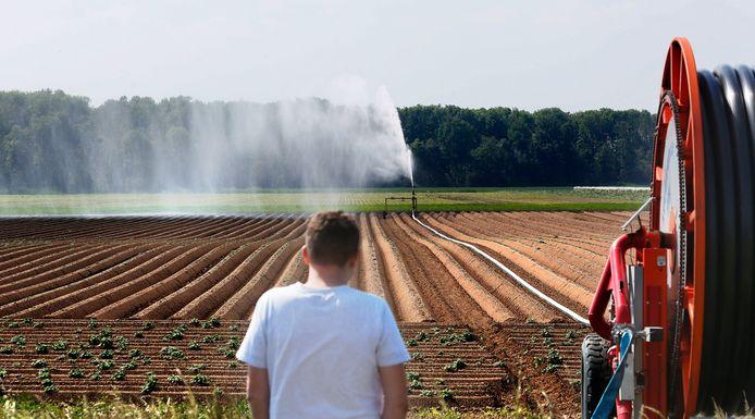 Langdurige droogte kwam de afgelopen jaren vaker voor. Door klimaatverandering kan het aantal droogtes verder toenemen, en dat zal een behoorlijke kostenpost vormen voor boeren met gortdroge akkers.
