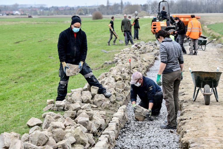 Leraar en leerlingen van de tuinbouwschool van Lomme herstellen de kasseistrook van Mons-en-Pévèle. Beeld Florian Van Eenoo Photo News
