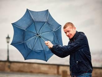 Officieel Belgische storm: KMI waarschuwt voor felle windstoten