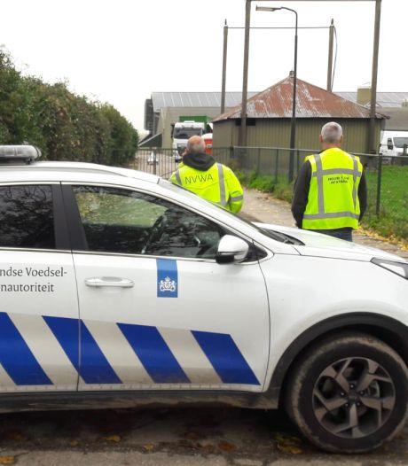 Ruimen 35.700 kippen met vogelgriep in Altforst begonnen; bedrijven in de buurt onder de loep