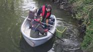 Steeds meer vis in de Zwalm