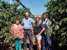 Kamperen tussen kippen en kersen op boerderij Nieuw Hof: 'Wij wilden wat een ander niet had'
