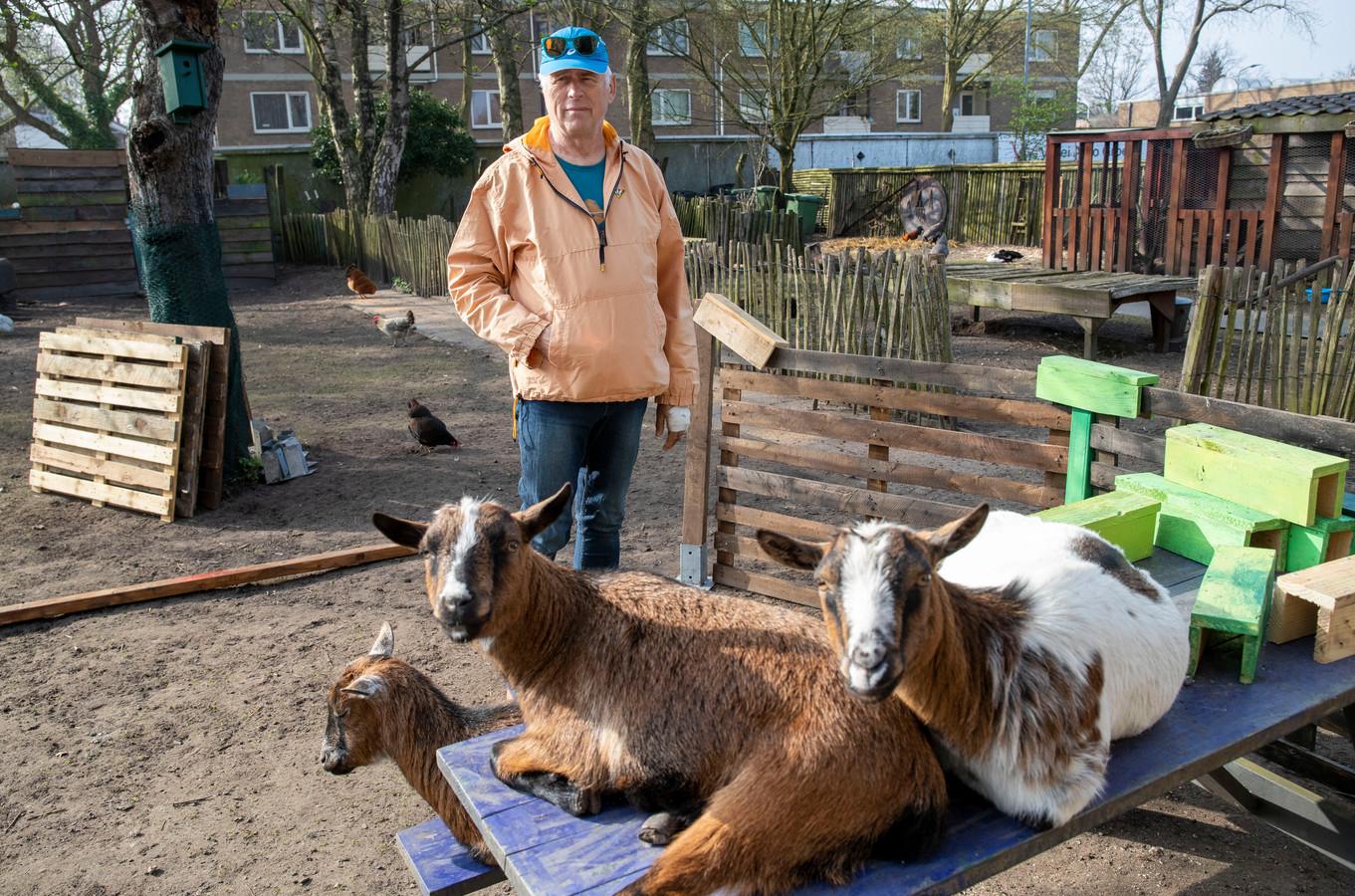 Hans Burgersdijk tussen de geiten bij zijn sportwinkel.