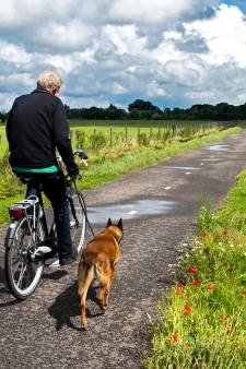 Inwoners houden van het tijdelijk fietspad langs Oortjespad en willen het niet kwijt