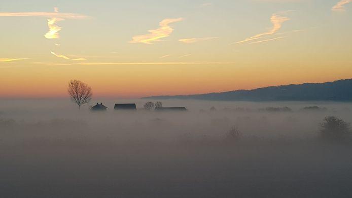 Ooijpolder in de ochtendnevel (woensdag)