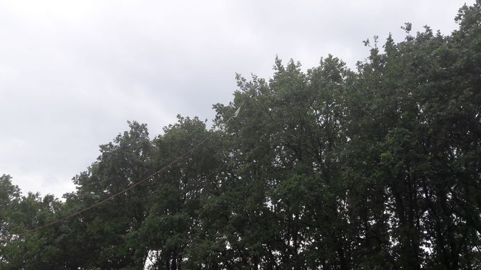 De kabel van het vliegtuigje hangt in de boom.