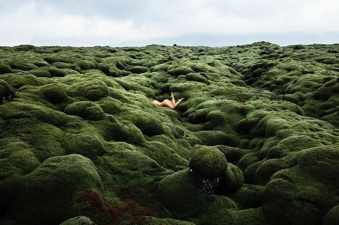 """Marisa Papen: """"Ik wilde dat de foto's zouden tonen hoe krachtig, groots en grotesk de natuur is."""""""