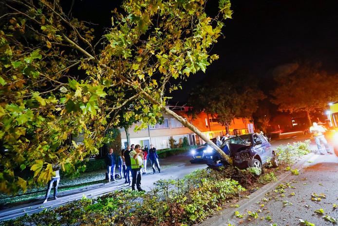 Auto tegen boom gereden in Waalre.