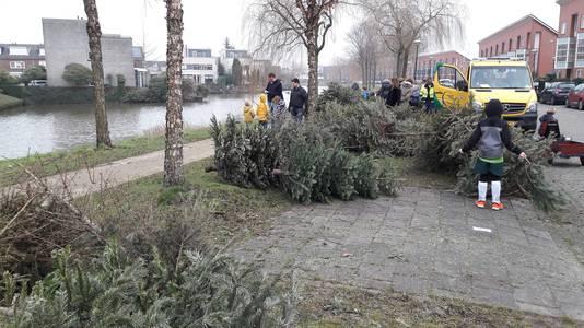 Kerstbomen inzameling Woerden