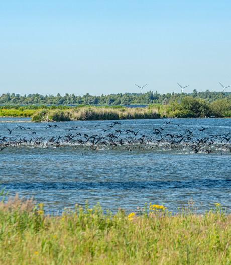 Aanpak Volkerak-Zoommeer verdeelt de regio, Den Haag wil alle kikkers weer in de kruiwagen