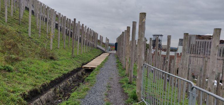 Parcours: 5 - Tussen palen op de Avonturenberg door
