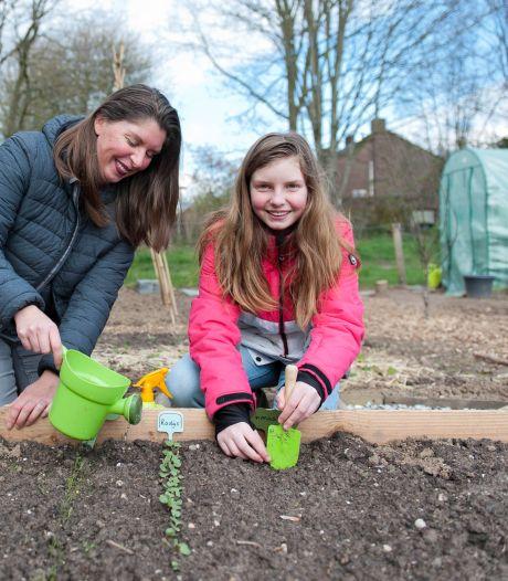 Kinderen aan de moestuin: 'Kweek in eierdoos of maak van druivendoosje een kweekkastje'