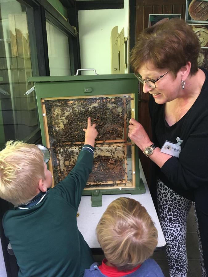 Beerendonk wijst Tijn van 5 en Jip van 3 aan waar de koningin in de bijenkast zit.