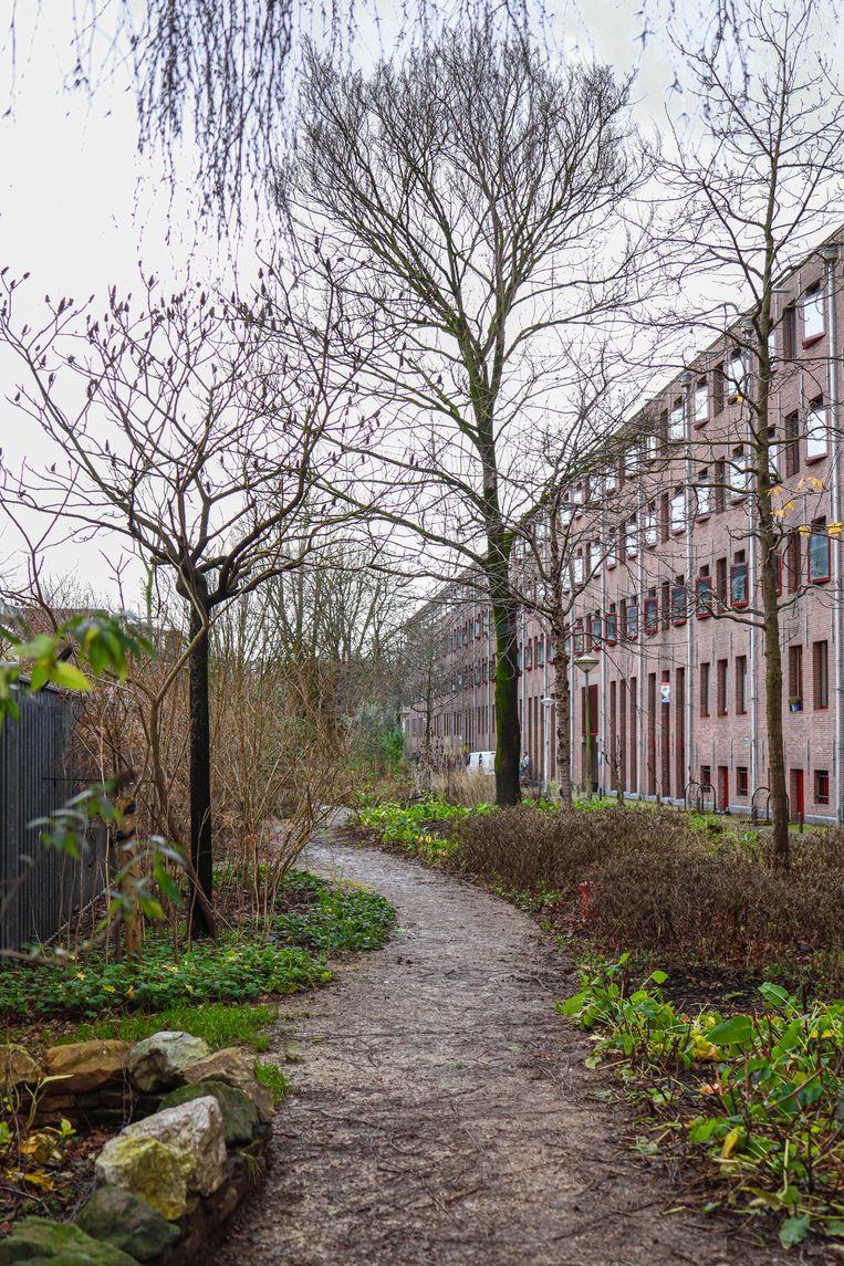 Op 9 januari wandelden we door de binnentuinen van het voormalige Rijks Entrepot. De 84 monumentale pakhuizen aan het Entrepotdok, tussen 1708 en 1829 in fasen gebouwd, zijn eind vorige eeuw verbouwd tot ateliers, bedrijfsruimtes en sociale woningen. Winnaar is Elsemarie Rombouts.  Beeld Anouk Hulsebosch