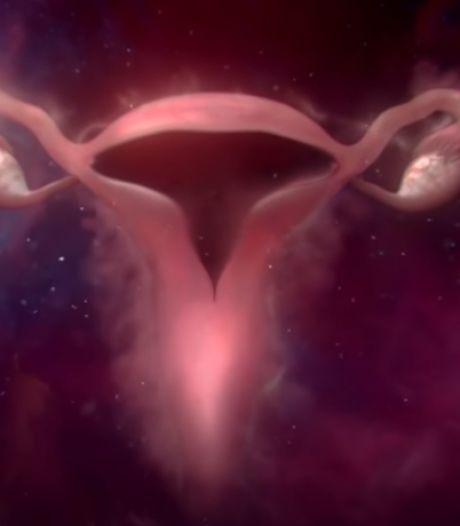 Cette pub dépeint la vie de l'utérus sans tabou (et fait le buzz)