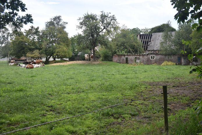 Het ministerie van Landbouw, Natuur en Voedselkwaliteit stelt een subsidie van 2,1 miljoen euro beschikbaar voor veranderingen in het buitengebied van De Kempen. Op de foto een vervallen boerderij in Vessem.