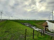 Reimerswaalse raad gaat ondanks protesten niet voor windpark ZE-BRA liggen