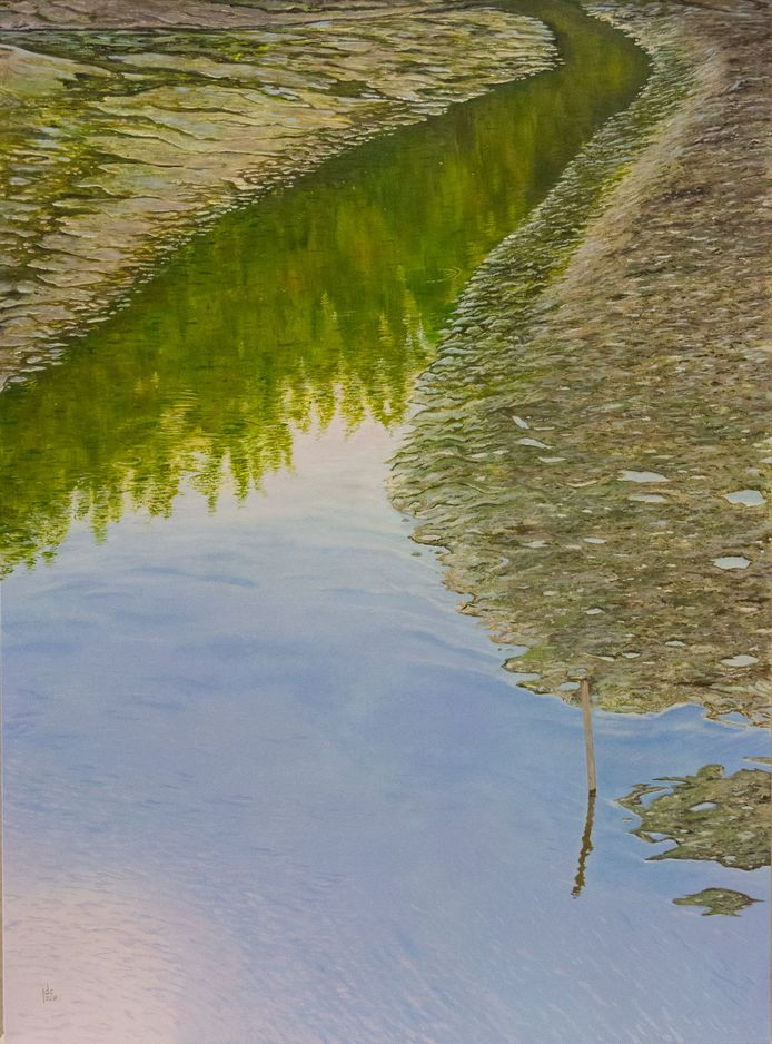 Jef laat zich inspireren door de natuur en de Schelde.