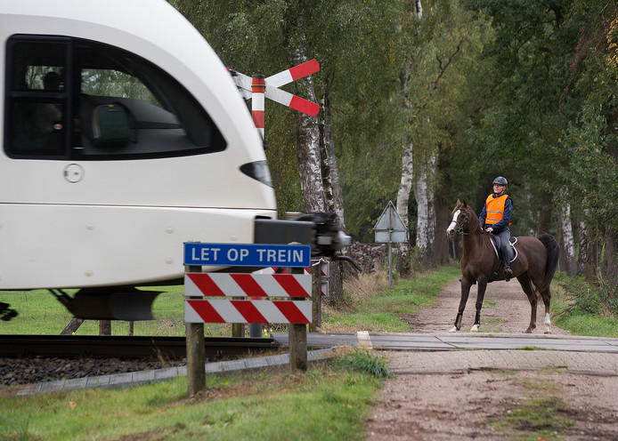 Suzanne van Rossum bij één van de onbewaakte spoorwegovergangen in Winterswijk.