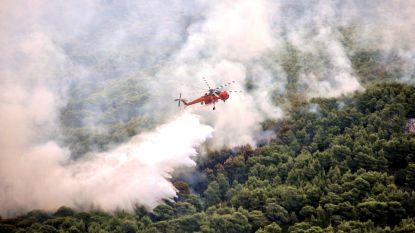 """Tsipras legt schuld bosbranden bij illegale woningen: """"Alles wat een gevaar betekent zal worden vernietigd"""""""