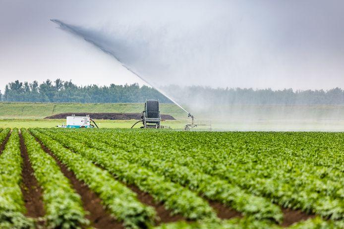 Boeren die hun land op droge dagen willen beregenen, mogen daarvoor in grote delen van West-Brabant geen water uit beekjes en sloten gebruiken. Het is te droog, dus probeert het waterschap zoveel mogelijk water vast te houden.