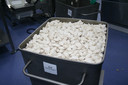 Per uur rollen er 50.000 dumplings van de band bij Euro Dumplings.