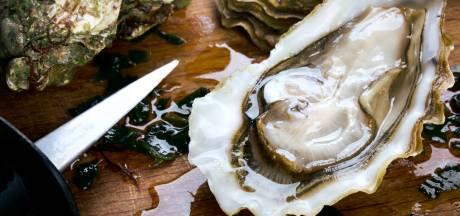 Nos smartphones bientôt incassables... grâce aux huîtres?